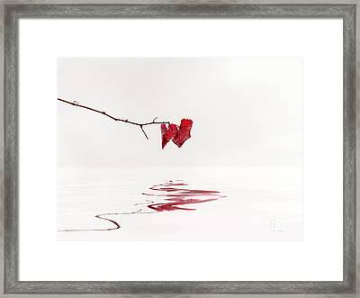 Simply Leaves Framed Print