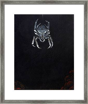 Simply Spider Framed Print by Cara Bevan