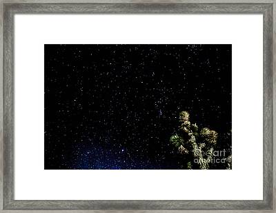Simply Star's Framed Print