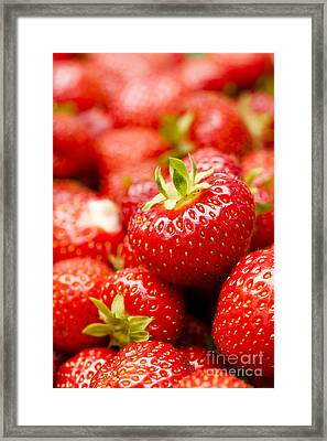Simply Strawberries Framed Print by Anne Gilbert