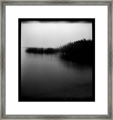 Simulacrum -9.5 Framed Print by Alex Zhul