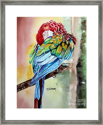 Sinbad Framed Print by Maria Barry
