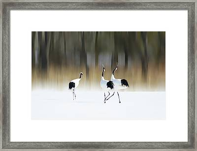 Sing A Song Of Love Framed Print by Ikuo Iga