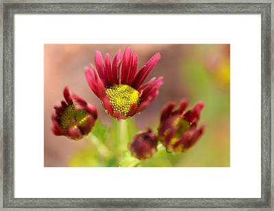 Sing To The Lord Framed Print