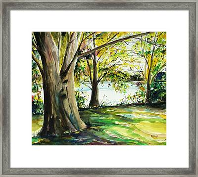 Singeltary Shade Framed Print by Scott Nelson
