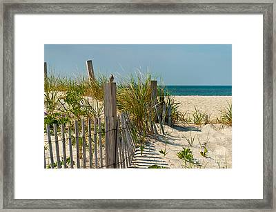Singer At The Shore Framed Print
