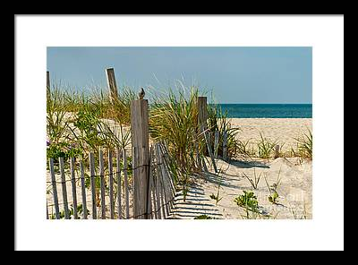 Sand Dune Framed Prints