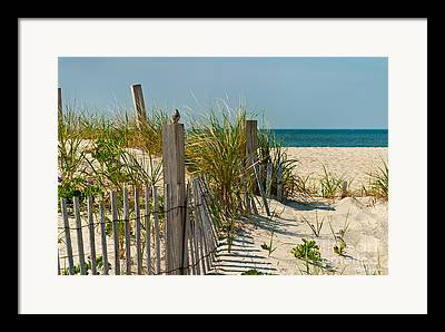 Sand Fences Framed Prints
