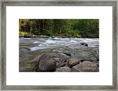 Singing Creek Framed Print by Tim Rice