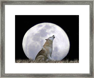 Singing Moon Framed Print by Stephanie Laird
