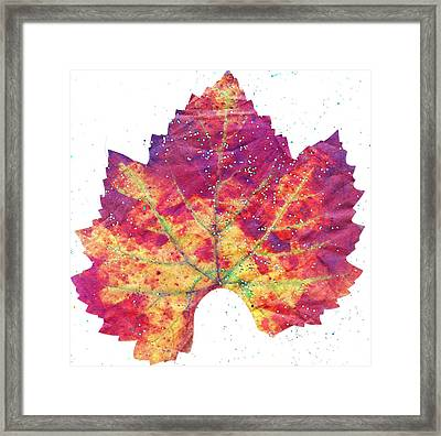 Single Autumn Leaf Framed Print by Anne-Elizabeth Whiteway