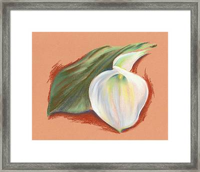 Single Calla Lily And Leaf Framed Print by MM Anderson