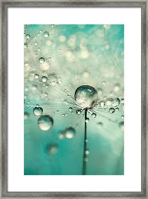 Single Dandy Starburst Framed Print