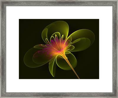 Single Flower Framed Print