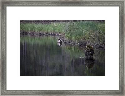 Single Rock Framed Print