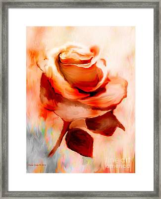 Single Rose Painting Framed Print by Annie Zeno