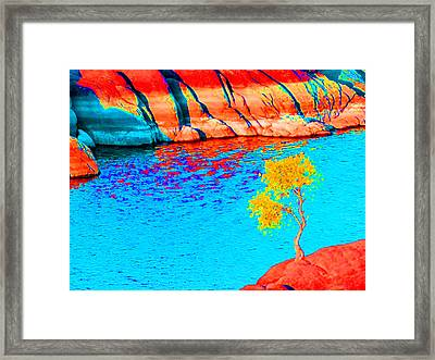 Single Tree In Red Yellow And Blue Framed Print by Alan and Marcia Socolik