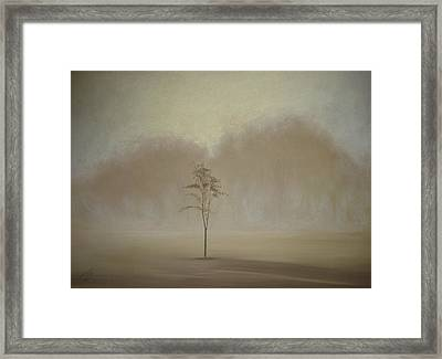 Single Tree - Pastel Framed Print by Ben Kotyuk