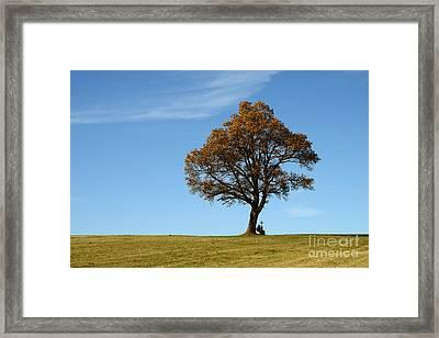 Single Tree With Wayside Cross Framed Print