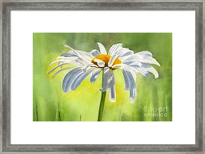 Single White Daisy Blossom Framed Print by Sharon Freeman