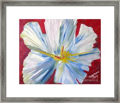Single White Flower Framed Print by Judy Morris