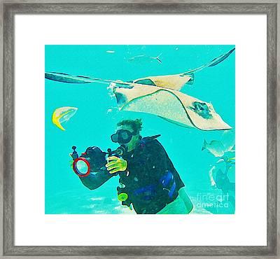 Singray City Cayman Islands One Framed Print by John Malone