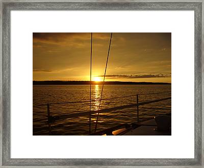 Stay Golden Framed Print