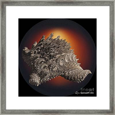 Sinuous Grace Framed Print