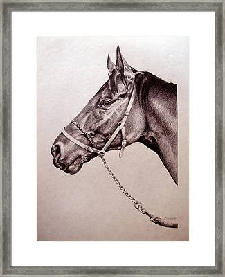 Sir Alfred 2 Framed Print by Patricia Howitt