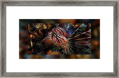 Sir George Lionfish II Framed Print by Robin Curtiss