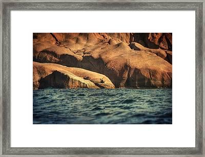 Siren Rocks II Framed Print