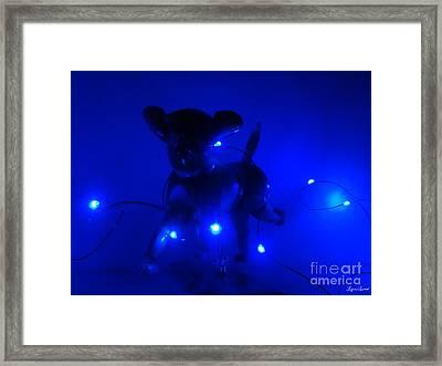 Sirius Dog Star Framed Print by Lyric Lucas