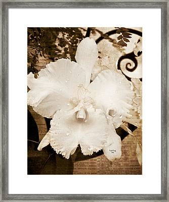 Sisterly Orchid Framed Print by Trish Tritz