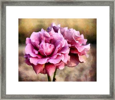 Sisters Before The Storm Framed Print by RC deWinter