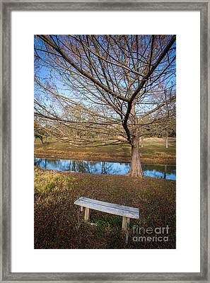 Sit And Dream Framed Print