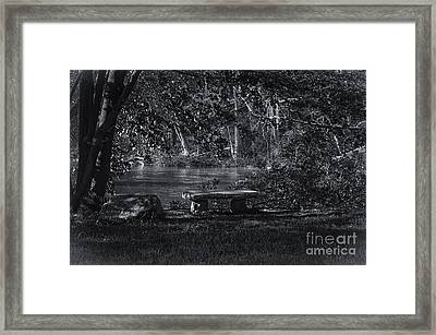 Framed Print featuring the photograph Sit And Ponder by Mark Myhaver