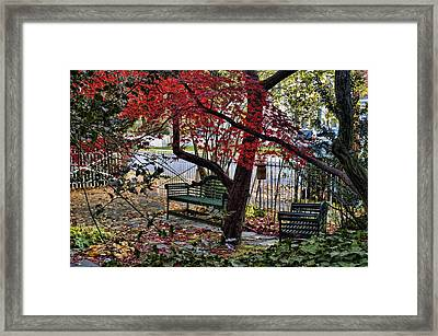Framed Print featuring the photograph Sit Down And Relax by Robert Culver