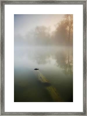 Sit Still Framed Print