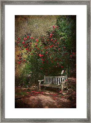 Sit With Me Here Framed Print by Laurie Search