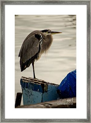 Sittin' On The Dock Of The Bay Framed Print