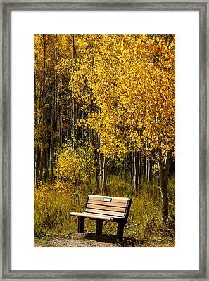 Sitting In Color Framed Print