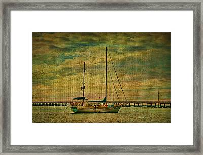 Sitting In The Bay Framed Print by Deborah Benoit