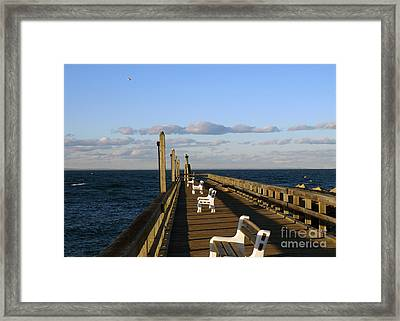 Sitting On The Dock Framed Print