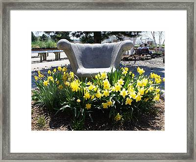 Framed Print featuring the photograph Sitting Pretty by Kristine Bogdanovich