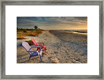 Sitting Pretty Framed Print by Steven Ainsworth