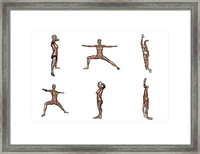Six Different Views Of Warrior Yoga Framed Print by Elena Duvernay