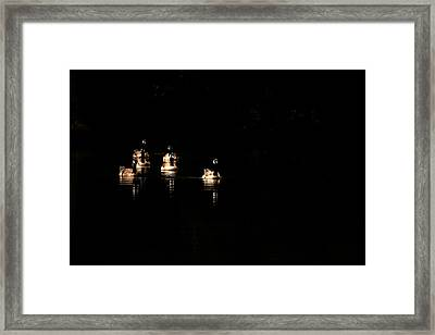 Six Geese A Swimming Framed Print by Karol Livote