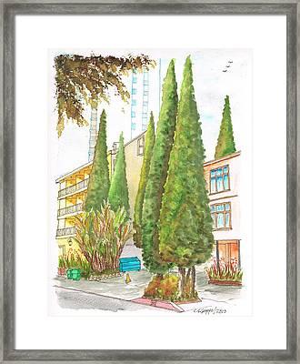 Six Sad Cypresses At 8700 Shoreham Dr In The Hollywood Hills-california Framed Print