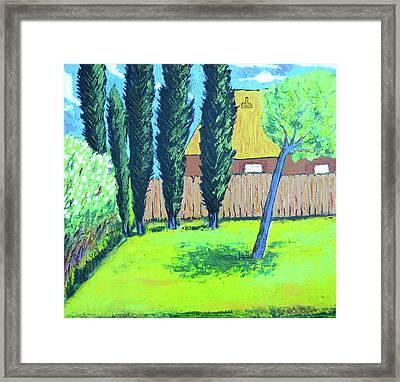 Six Trees In A Backyard Framed Print
