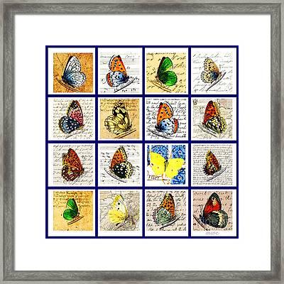 Sixteen Butterflies Framed Print